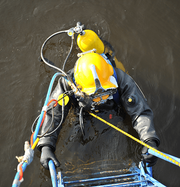 Service providers painters benefits Vessel Check Marine Biosecurity Software Tools